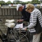 fiets4daagse_0003