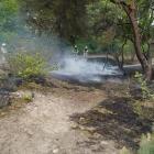 natuurbrand_wijffelterbroekdijk_7