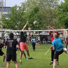 volleybal_stadspark_18