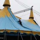 opnouw_circus_21