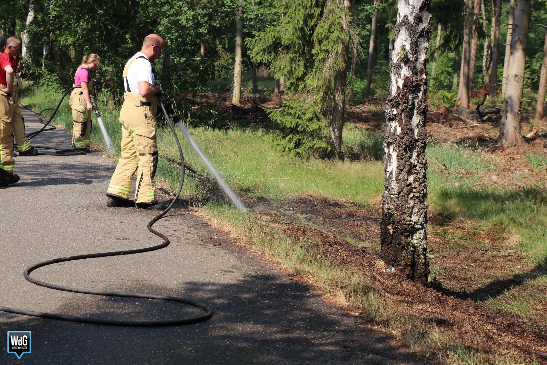 Natuurbrandje in Budel-Dorplein