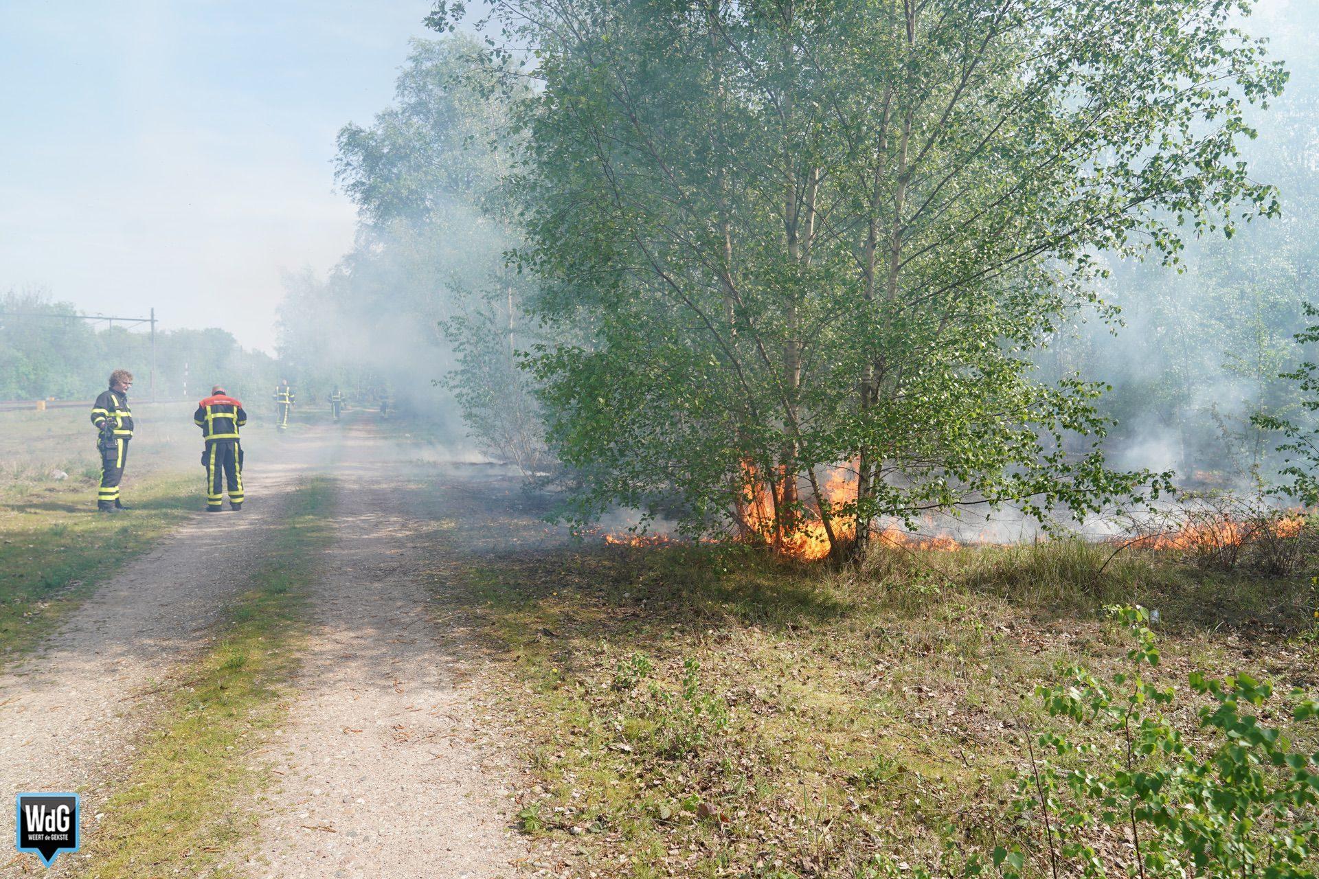 Natuurbrand naast spoorlijn